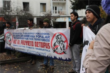 protestaoctopus