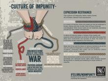 impunity-poster-en2015updatemed