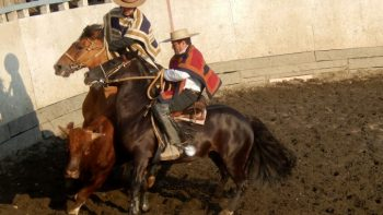Rodeo_Chiloe-678x381