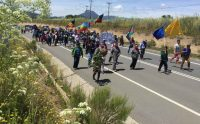 marcha pehuenche