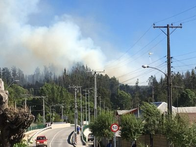 Incendio Hualqui